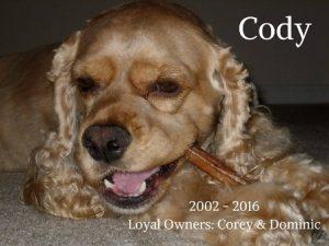 Cody_Post